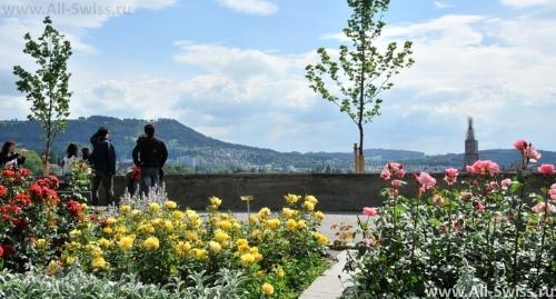 Rosengarten / Розовый Сад